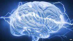 Neurotoxins identified that fry children's brains