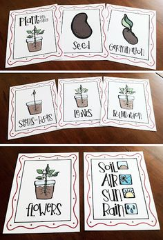 Plant Life Unit Study   (great for Apologia's Botany... you use mini Terra Cotta pots and mini watering cans. So fun!)