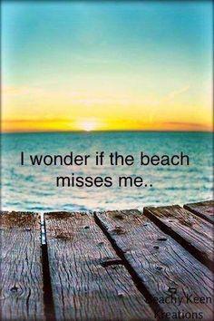 Miss me??
