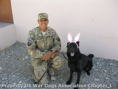 Hopping down the bunny trail! Happy Easter to all those who celebrate the holiday from all of us at US War Dogs.
