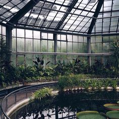A beautiful greenhouse with a pond in the middle!