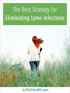 In this article, Lyme survivor, author and researcher Connie Strasheim shares about the best strategy for treating Lyme infections.
