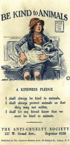 kindness pledge...this reminds me of a book I read when I was a kid, and loved, called Beautiful Joe.  Does anyone else remember Beautiful Joe?  Kind of the Black Beauty of dog stories ;)