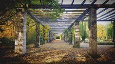 Bis ans Ende #leipzig #herbst #autumn