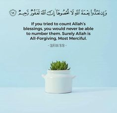 Quranic Ayah Muslim Quotes, Islamic Quotes, Hindi Quotes, Noble Quran, Seeking God, Islamic Pictures, You Tried, Forgiveness, Allah