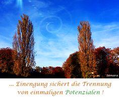 ... #Einengung sichert die #Trennung von einmaligen #Potenzialen !