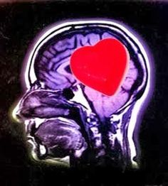 o poder do ser Inteligência interpessoal - desvendando as emoções