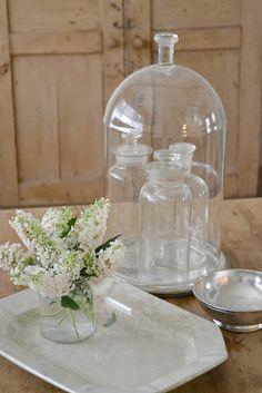 scientific glass bell jar