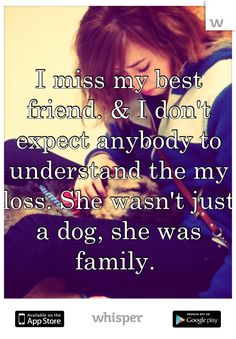 I miss my best friend. And I don't expect anybody to understand my loss. He wasn't just a dog. He was family