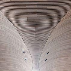 Cedar wood ceiling inside the National Assembly for Wales Cardiff Bay. Architect: Richard Rogers Partnership. #ukcoastwalk Photo: Quintin Lake www.theperimeter.uk