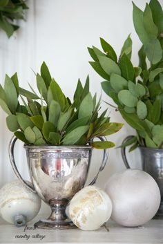 Fresh bay leaves..sigh.  FRENCH COUNTRY COTTAGE: French Country Cottage Christmas ~ Home Tour