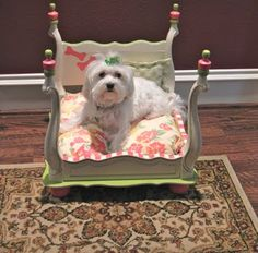 tag Handmade Pet Bed by DarlinLillyRose on Etsy puppies Heart Cute Dog Beds, Diy Dog Bed, Pet Beds, Cute Dogs, Doggie Beds, Doggies, Fun Dog, Pekinese, Dog Furniture