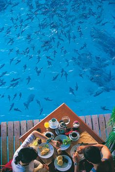 Just... You Know... Outside Hotel Dining at Le Meridien in Bora Bora, Tahiti...
