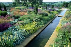Andrew Lawson - Photography of Plants and Gardens - Gardens Page