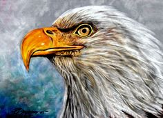 Original fine art, prints, canvas, acrylic, metal and more.