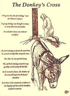 The Donkeys Cross Drawing  - The Donkeys Cross Fine Art Print +++++ I am glad to find this tale.  I could never remember it.  Sweet.