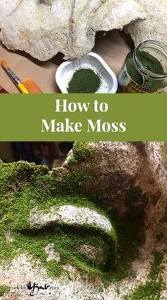 How to Make Moss - MadeByBarb - easy method to add realistic green moss to concrete Different methods of How to make moss on concrete and other Objects, realistic and durable ways to create natural green accents Garden Crafts, Garden Projects, Garden Art, Garden Design, Concrete Crafts, Concrete Art, Concrete Garden, Concrete Design, Growing Moss