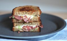 Green onion and Salami grilled cheese