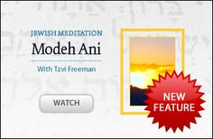 Rabbi Tzvi Freeman provides a first entry into authentic and practical Jewish meditation. Taking us step by step through the words of the first morning prayer, providing imagery and concepts for mindful focus.