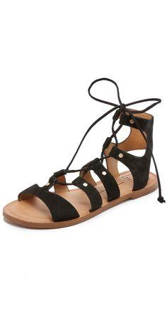 a47a6f269ae4 Dolce Vita Jasmyn Suede Gladiator Sandals