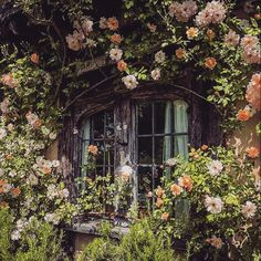The Happy Cottage Spring Aesthetic, Nature Aesthetic, Different Aesthetics, Cottage In The Woods, Cottage Style, Aesthetic Pictures, Aesthetic Wallpapers, White Flowers, Forest Flowers