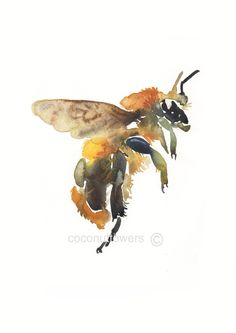 Pretty water color.  Art - A4 11.7x8.3in - Watercolor Art- Nursery Art Print-  Buzzy Bee. $10.00, via Etsy.