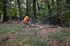 Chamblee Chamber Clean-Up Event at the Nancy Creek Primitive Baptist Church Cemetery.