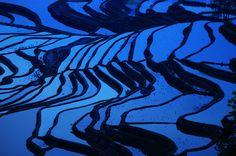 """""""Vietnam. Cultura di riso e bambù"""", fotografie di Massimo Allegro, dal 10 al 27 gennaio 2013 alla Casa delle culture del mondo della Provincia di Milano. Vietnam, Milano, Abstract, Artwork, Summary, Work Of Art, Auguste Rodin Artwork, Artworks, Illustrators"""
