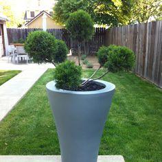 Pots Pots, Garden, Garten, Lawn And Garden, Gardens, Gardening, Outdoor, Cookware, Jars