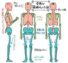 イラストで人を描くには人体構造を知ることが上達の近道! – ラインスタンプ工房+イラスト上達のコツ一枚絵描き方研究室 Action Pose Reference, Drawing Reference Poses, Anatomy Reference, Basic Drawing, Drawing Lessons, Drawing Tips, Anatomy Sketches, Body Sketches, Human Anatomy Drawing