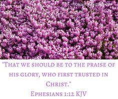Ephesians 1:12 KJV
