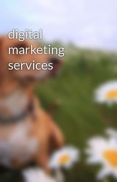 #Digital #Marketing #services in all india