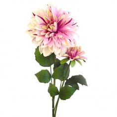 This artificial Dahlia Flower Stem with beautiful toned purple flowers is as realistic as the real thing. It is from top to bottom (including of foliage and flowers). Dahlia Flower, Artificial Flowers, Purple Flowers, Plants, Beautiful, Top, Fake Flowers, Dahlia, Dahlias