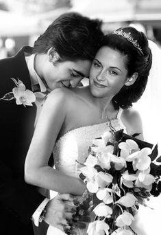 Twilight Saga - love it.