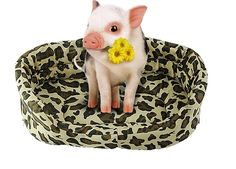 Plus Size (S,M,L,2XL) Winter Warm Sweet Cama Para Cachorro Pet Kitten Puppy Cat Dog Cushion Couch Basket Sofa Bed Mat Pad Leopard Style *** Startling review available here  : Pet dog bedding