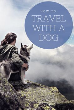 Don't leave your furry friend at home! With these helpful tips, traveling with your dog is easy! #CentralCoasting
