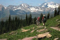 Glacier National Park    The Highline Trail is now open. Go take a hike! (dr)