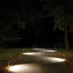 Gorgeous traditional garden lighting ideas tips for 2019 Outdoor Path Lighting, Driveway Lighting, Outdoor Walkway, Backyard Lighting, Patio Lighting, Landscape Lighting, Lighting Ideas, Bollard Lighting, Walkway Ideas