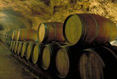 Lebanon winery