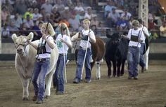 The Parade of Champions at the Iowa State Fair. Photo by Mary Chind, desmoinesregister.com #Parade_of_Champions #Iowa_State_Fair #Mary_Chind