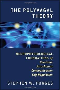 The Polyvagal Theory: Neurophysiological Foundations of Emotions, Attachment, Communication, and Self-regulation (Norton Series on Interpersonal Neurobiology) by Stephen W. Porges - W. The Human Body, Behavioral Neuroscience, Curriculum, Trauma Therapy, Occupational Therapy, Autonomic Nervous System, Stress, Anxiety Treatment, Books