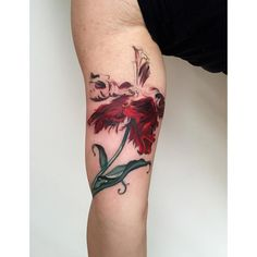 this is onnnne session away from being a perroquet rouge tulip