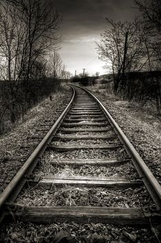Trains & Tracks of Life