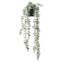 FEJKA Artificial potted plant, in/outdoor hanging, eucalyptus, 9 cm - IKEA Water Plants, Potted Plants, Indoor Plants, Indoor Outdoor, Artificial Plant Wall, Artificial Flowers, Ikea Plants, Ikea Family, Hanging Plants