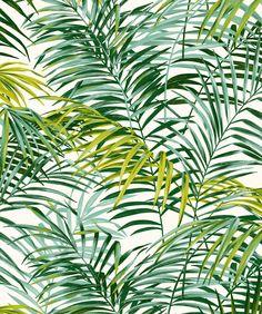 Green Palm Springs Stoff W. 280 cm: Möbelstoffe von kreative-deco - chloé pige - - Green Palm Springs Stoff W. Palm Springs, Tropical Art, Tropical Flowers, Tropical Prints, Palm Tree Leaves, Plant Leaves, Tropical Pattern, Of Wallpaper, Botanical Prints