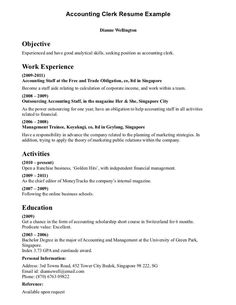 Accounting Assistant Resume Magnificent Nice Computer Programmer Resume Examples To Impress Employers Check .