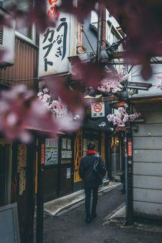 Shinjuku district of Tokyo in spring.