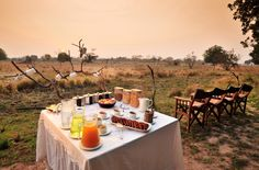 Luwi Bush Camp | Better Late Luxury