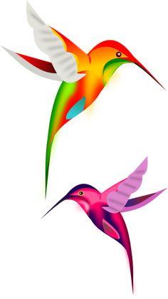 colibríes en vectores, imagen vectorial.