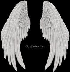 Wing Tattoo Men, Wing Tattoo Designs, Wings Drawing, Body Drawing, Wings Wallpaper, Love Wallpaper, Angel Wings Png, Wings Design, Angels And Demons